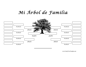 5 generacion arbol genealogico template for Free editable family tree template word
