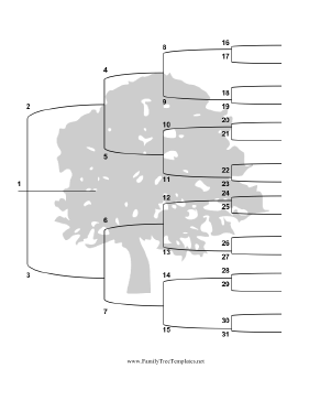 tree with brackets vertical template this five generation family tree ...