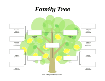 Two fathers adoptive family tree template for Family tree diagram template microsoft word
