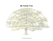 6 Generation Fan Family Tree